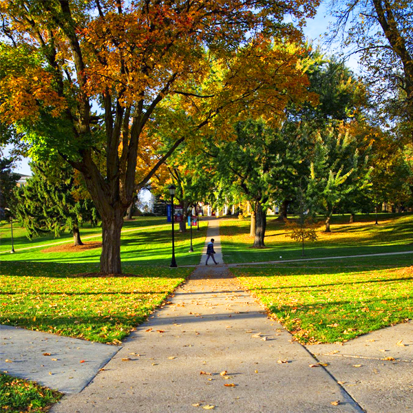 Campus is beautifully adorned in autumn splendor.