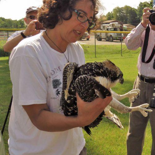 Memuna Khan with osprey