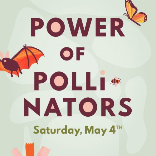 Power of Pollinators