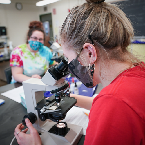 Students in a biology lab during COVID